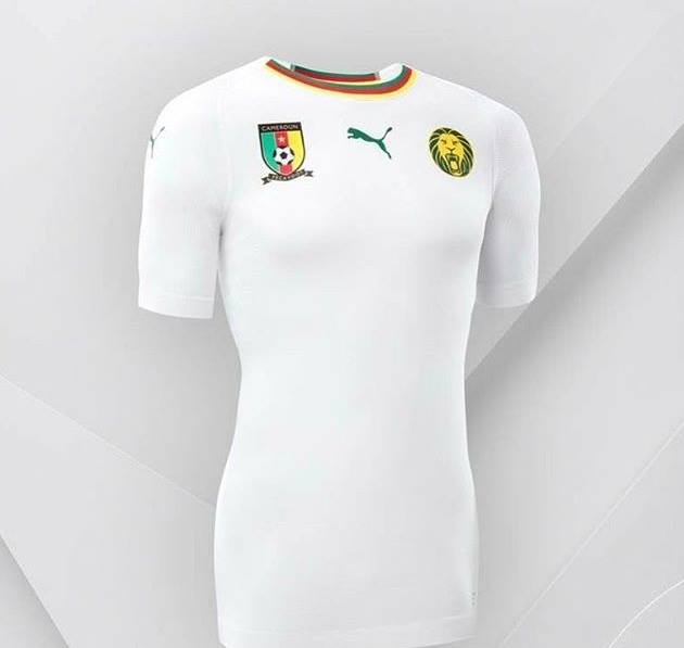916e0551fb8dd Puma présente le nouveau maillot à l extérieur du Cameroun
