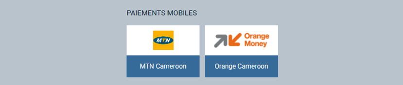 Paiements Mobiles MTN Mobile money, Orange Money